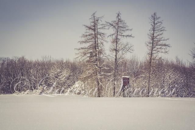 Schwäbische Alb im Schnee